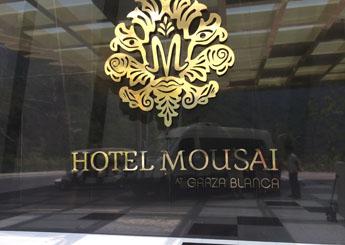 Hotel Mousai