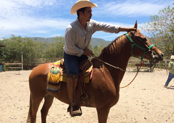 Horse ranch in Sierra Madre