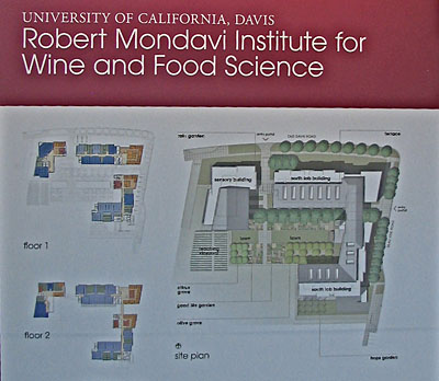 Robert Mondavi Institute