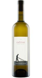 Cultivar Sauvignon Blanc